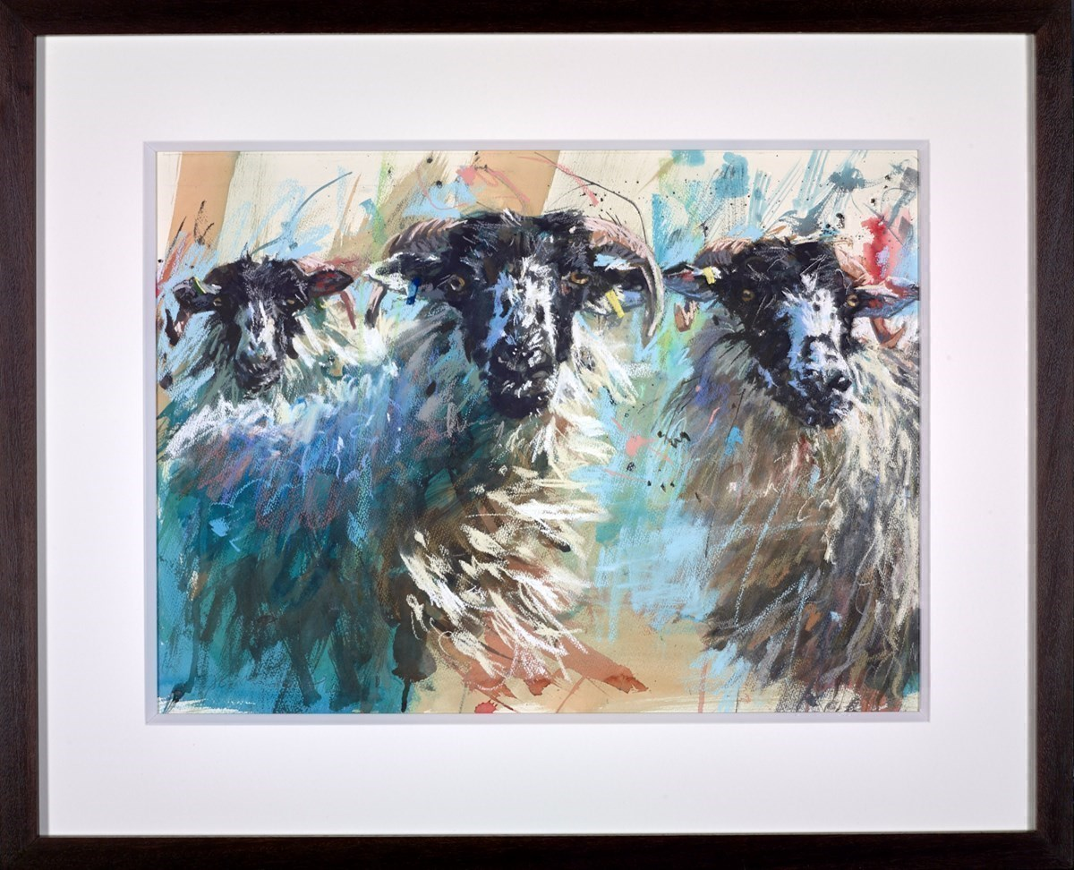 Three Rough Fell Ewes by James Bartholomew -  sized 28x21 inches. Available from Whitewall Galleries